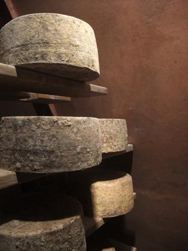 Bleu Mont cheese