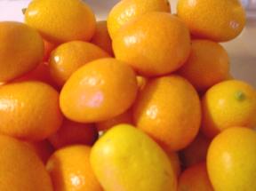 kumquats how to eat them