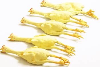 rubber chickens